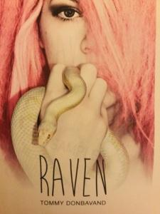 ravencover